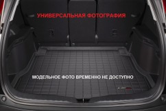Коврик в багажник премиум  BMW X3 2010-, черный
